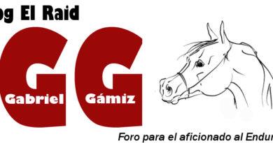 Blog El Raid.