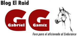 Blog el Raid