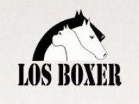 lg_logotipo