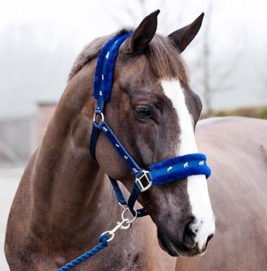 Como elegir la cabezada apropiada para tu caballo for Cabezadas para caballos