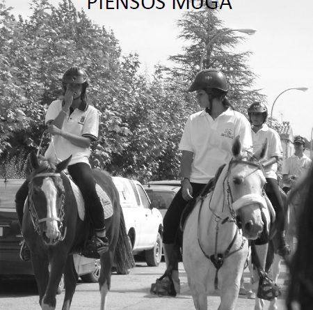 Trofeo 3 Autonomías.  Vasca, Aragonesa y Navarra.