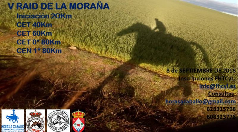 V Raid Hípico Alta Moraña en Riocabado (Avila).