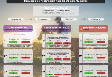Sistemas de Clasificación para Pruebas FEI.